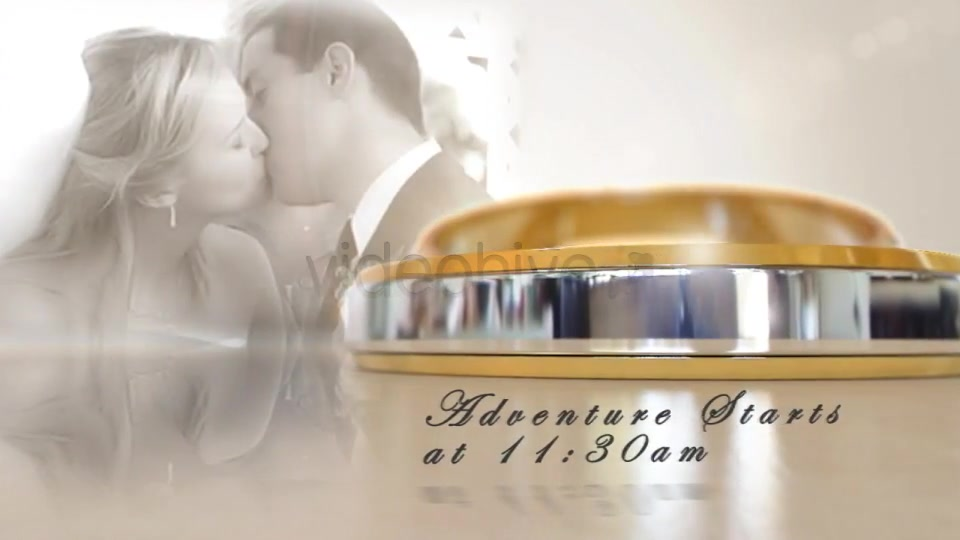 Wedding Invitation - Download Videohive 2533538