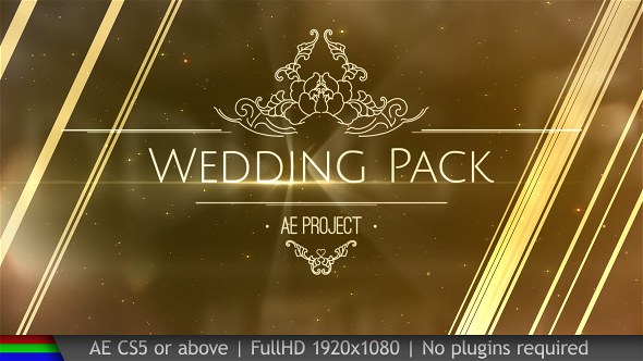 Wedding Pack - Download Videohive 20038431