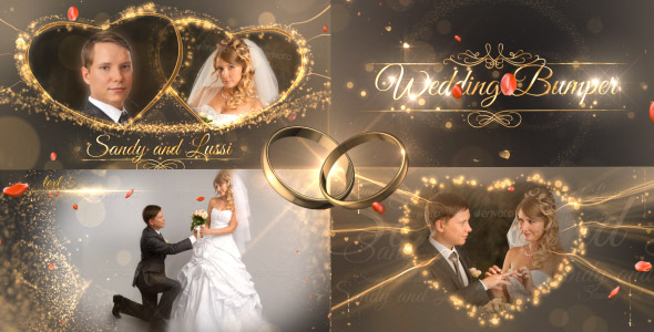 Wedding Package - Download Videohive 18844092