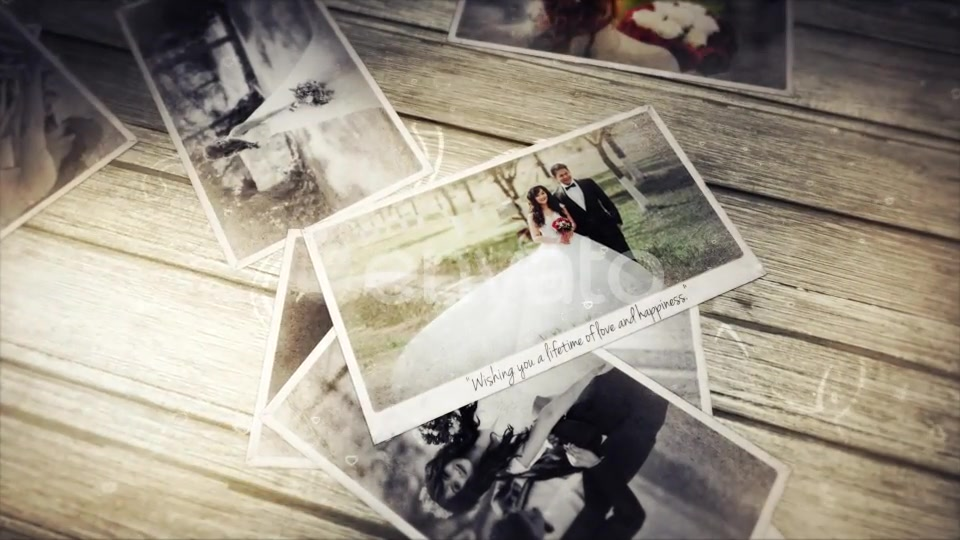 Wedding Photo Gallery - Download Videohive 21773255