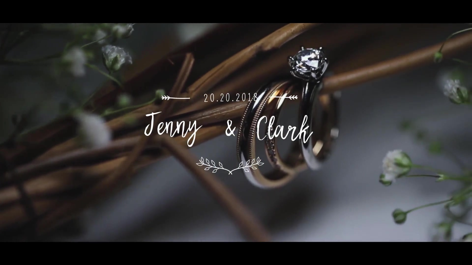 Wedding Titles 2 - Download Videohive 20874561