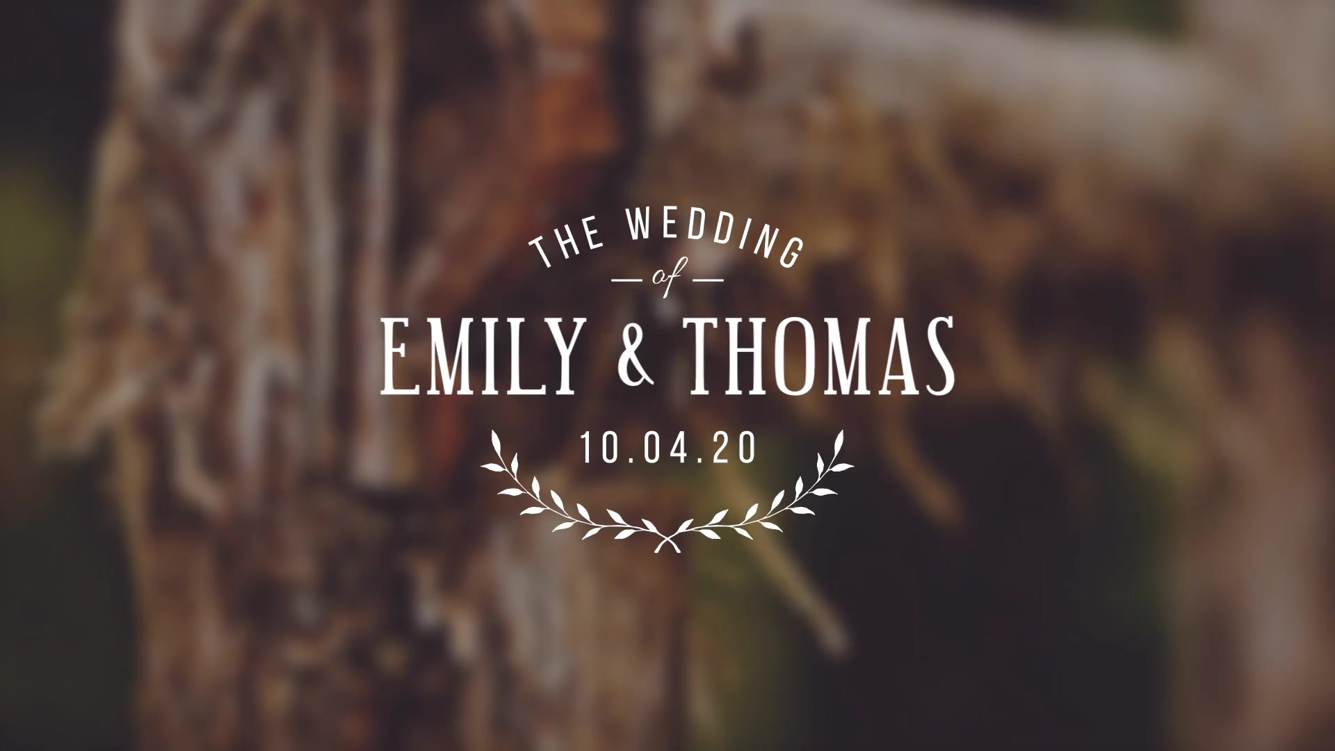 Wedding Titles - Download Videohive 15927020