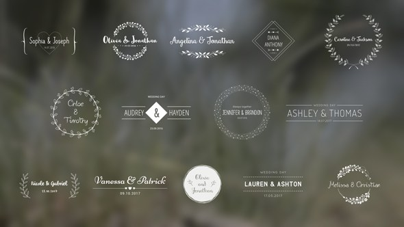 Wedding Titles - Download Videohive 18849528