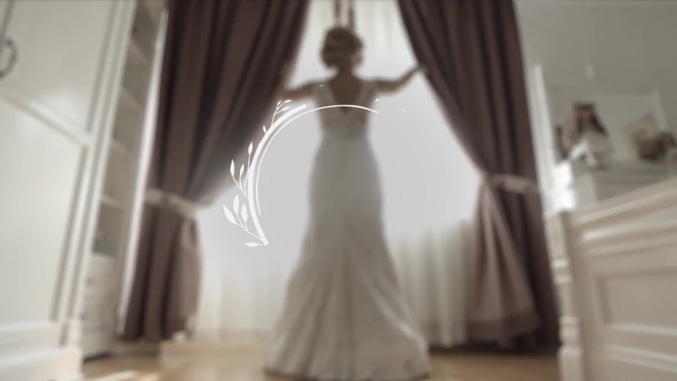 Wedding Titles - Download Videohive 19477052