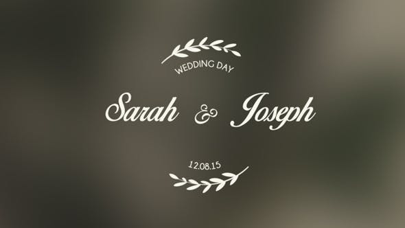 Wedding Titles - Videohive Download 13857407