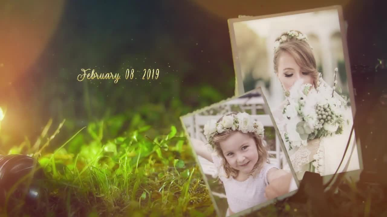 Wedding Videohive 24310524 After Effects Image 1