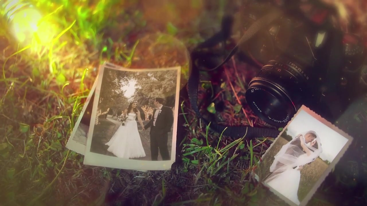 Wedding Videohive 24310524 After Effects Image 11