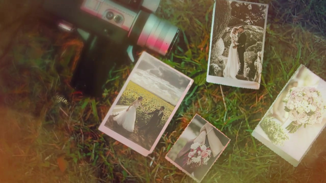 Wedding Videohive 24310524 After Effects Image 9