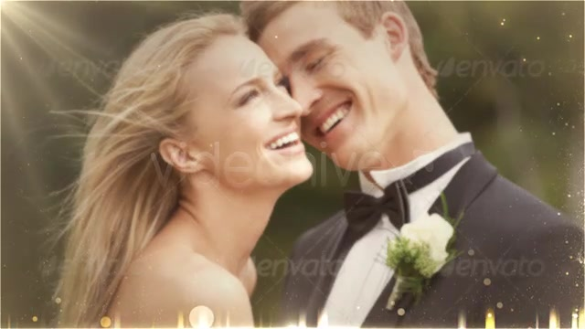Weddings Package - Download Videohive 4874937