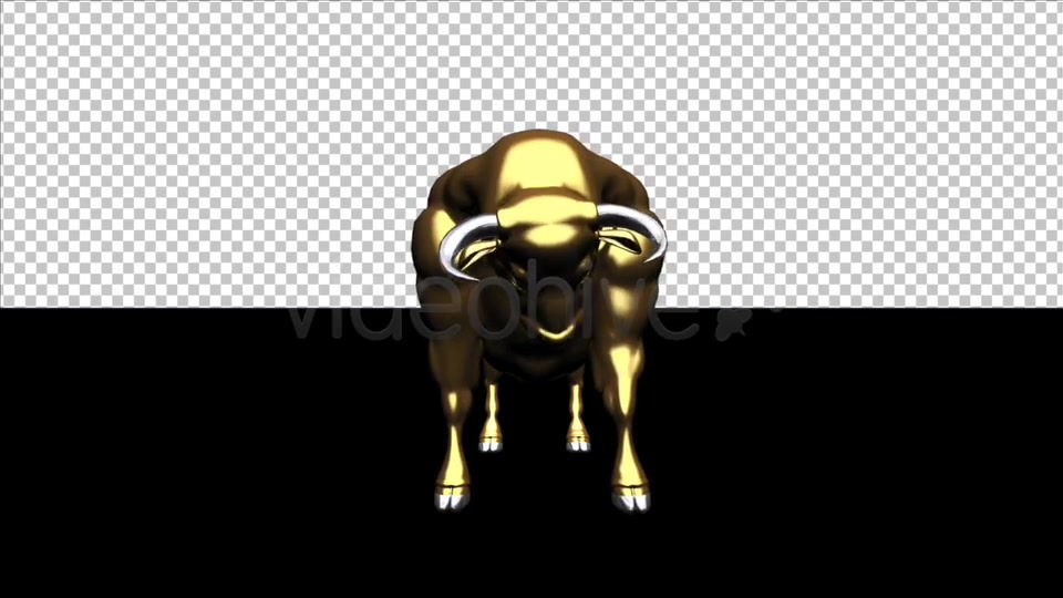 Bull Pack of 2 Videohive 6537216 Motion Graphics Image 10