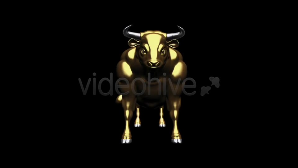 Bull Pack of 2 Videohive 6537216 Motion Graphics Image 7