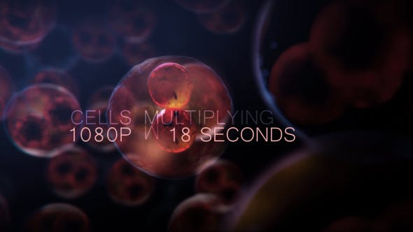 Cell DNA Hyper Division - Download 19712618 Videohive