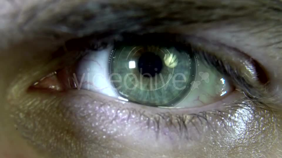 Eyes with Hologram Animation Videohive 19758447 Motion Graphics Image 1