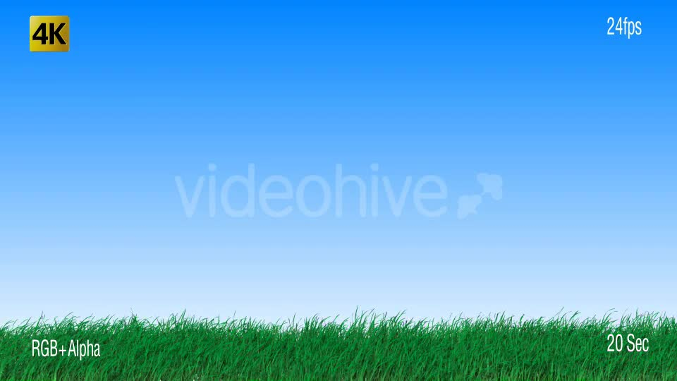 Grass Videohive 19725940 Motion Graphics Image 1
