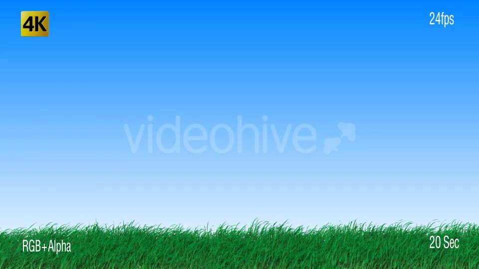 Grass Videohive 19725940 Motion Graphics Image 2