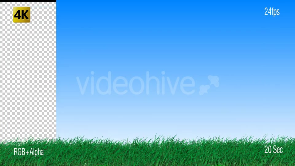 Grass Videohive 19725940 Motion Graphics Image 4