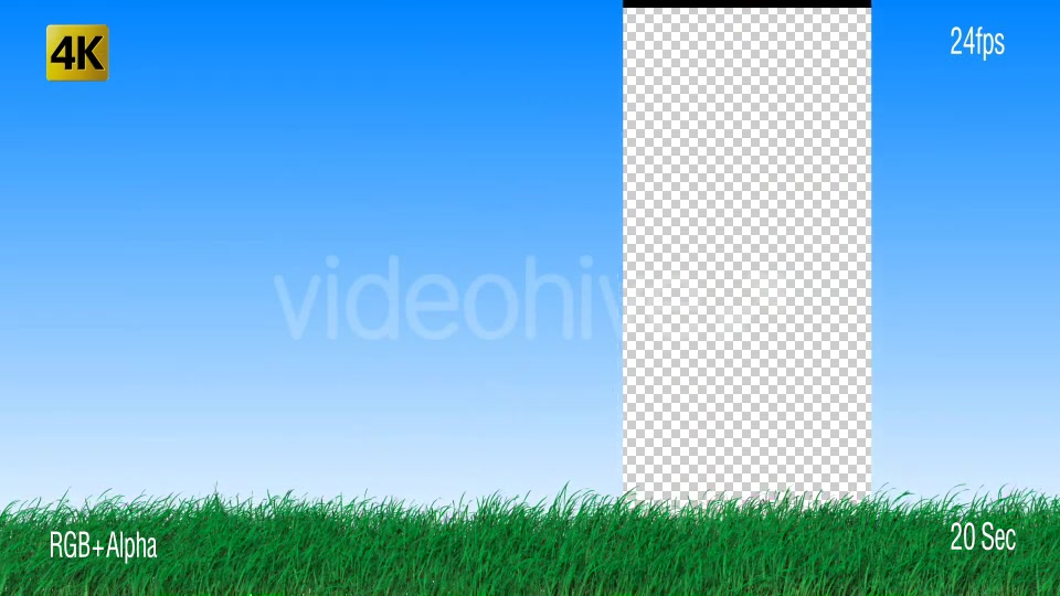 Grass Videohive 19725940 Motion Graphics Image 6