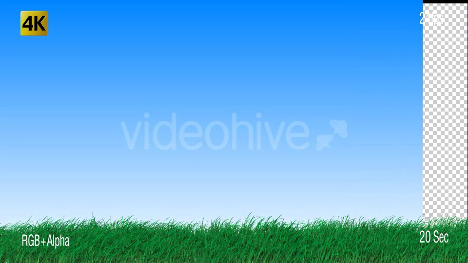 Grass Videohive 19725940 Motion Graphics Image 7