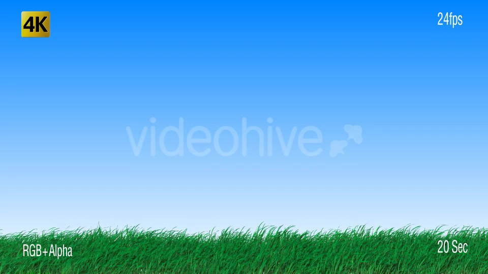 Grass Videohive 19725940 Motion Graphics Image 8