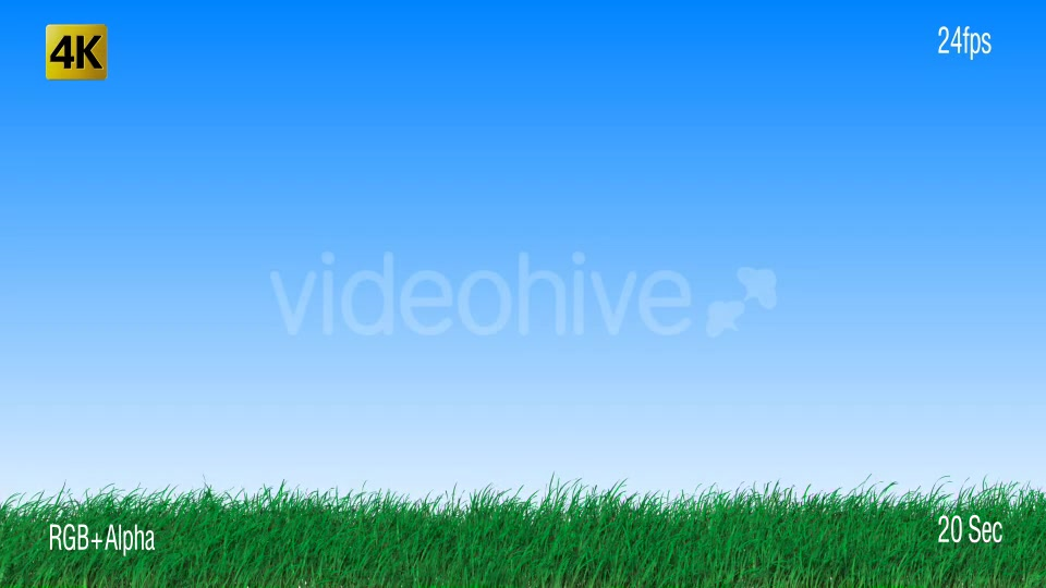 Grass Videohive 19725940 Motion Graphics Image 9