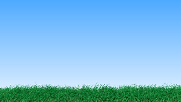 Grass - 19725940 Videohive Download