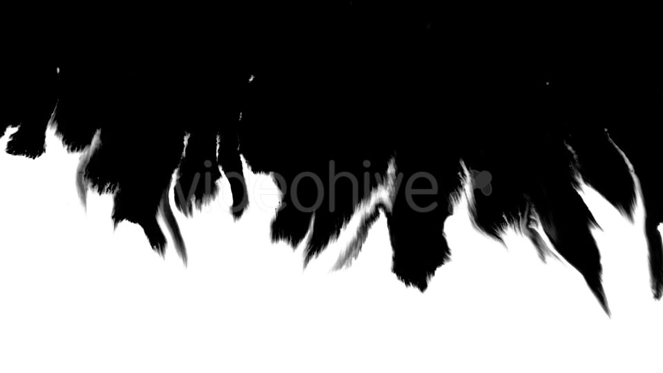 Ink Flowing From Top To Bottom on Wet Paper 04 Videohive 19697827 Motion Graphics Image 6