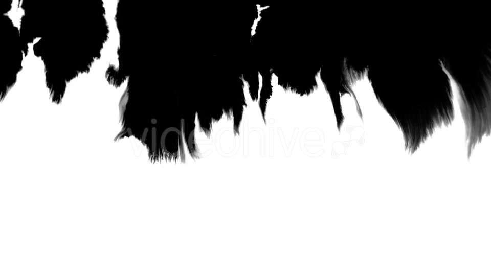 Ink Flowing From Top To Bottom on Wet Paper 06 Videohive 19697656 Motion Graphics Image 4