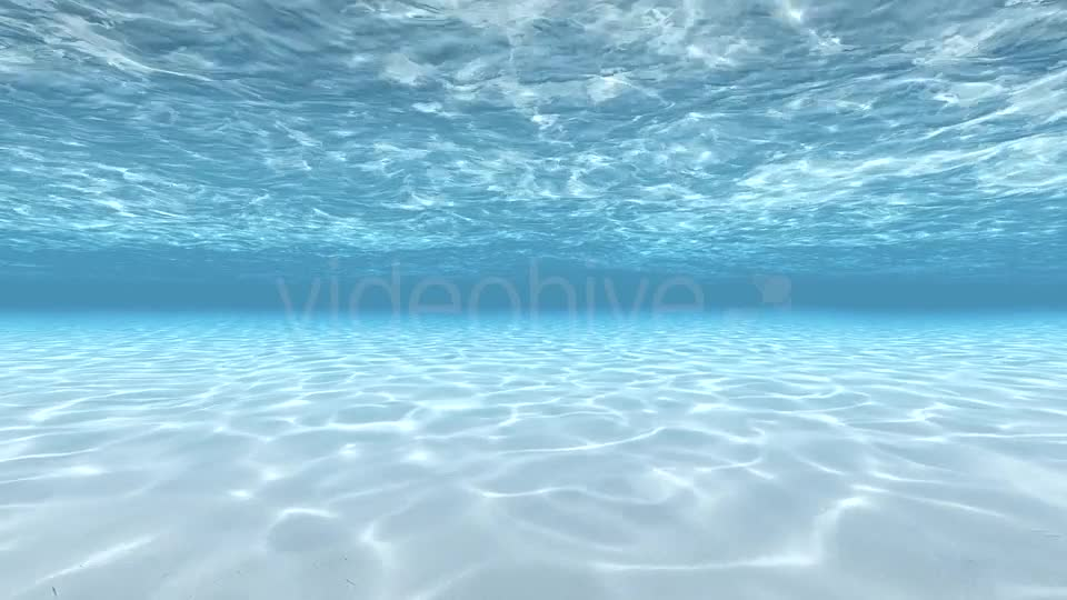 Swimming Under Water Videohive 19826191 Motion Graphics Image 1