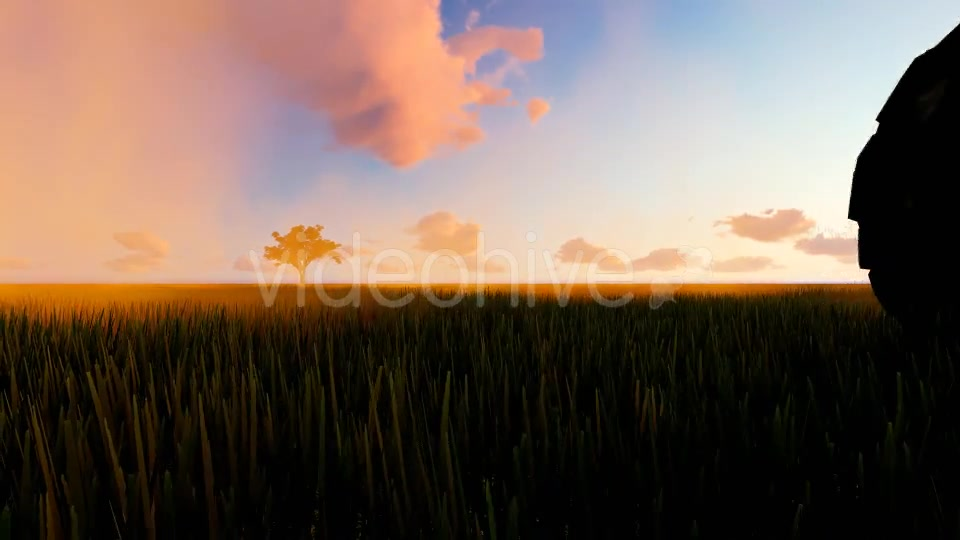 Tractor working in the field sunset Videohive 19761591 Motion Graphics Image 6